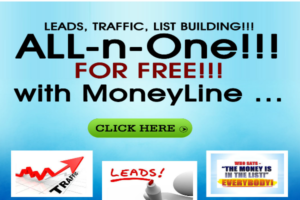 Leads Referrals Traffic