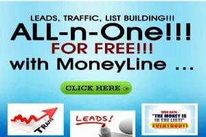 Leads, Traffic and List Building